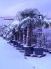 winterliche Impressionen_12