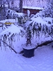 winterliche Impressionen_9