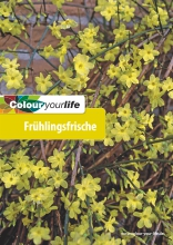 Colour your life - Frühlingsfrische